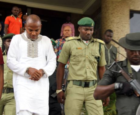 FG seeks court's order to re-arrest Nnamdi Kanu