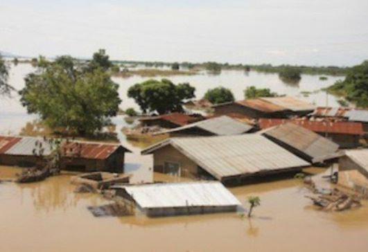 'With all due respect Benue needs cash, shelter, not just prayers' - Audu Maikori