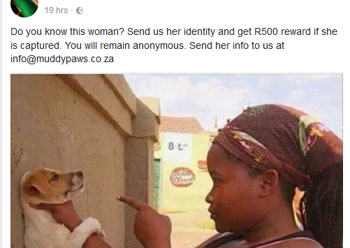 Lol. Reward offered to capture woman pictured warning a dog