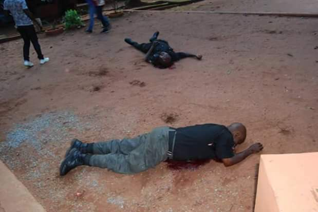 Gunmen bought beer for the three policemen at Ogba Zoo and killed them after they laid down their guns to drink - Staff