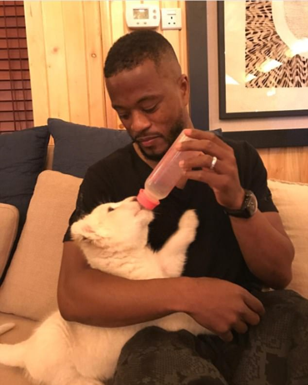 Former Man U defender, Patrice Evra, cradles and bottle feeds a baby lion, calls it