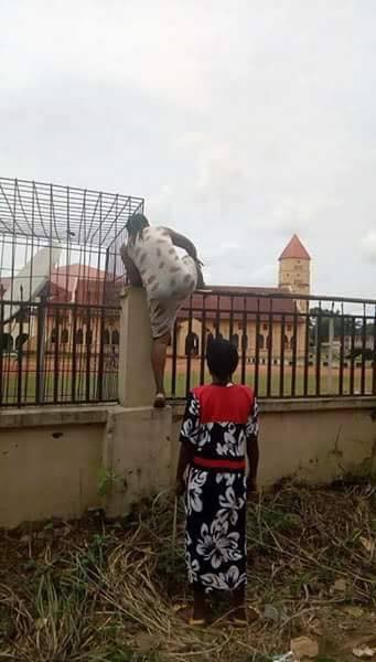 Viral photos of a mum climbing the fence to withdraw her child from school following fake news that officers were injecting pupils with Monkeypox virus