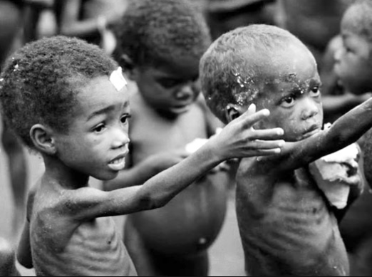 3.4 million people suffer malnutrition In North-East Nigeria -?United Nations