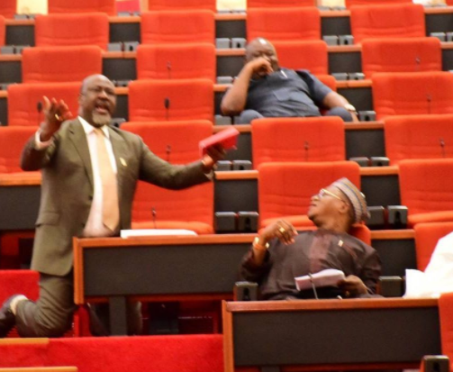 Photo: Dino Melaye goes on his knees in the senate, begs his colleagues to save Kogi state