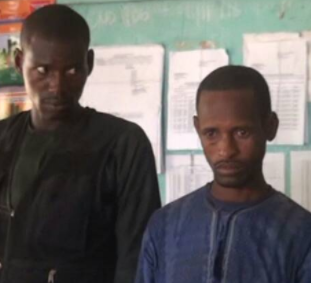 Photos: Herdsmen whose cows invaded and destroyed farmlands in Ekiti get arrested
