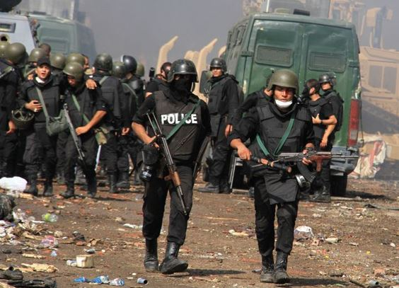 Egyptian security forces kill?11 suspected militants