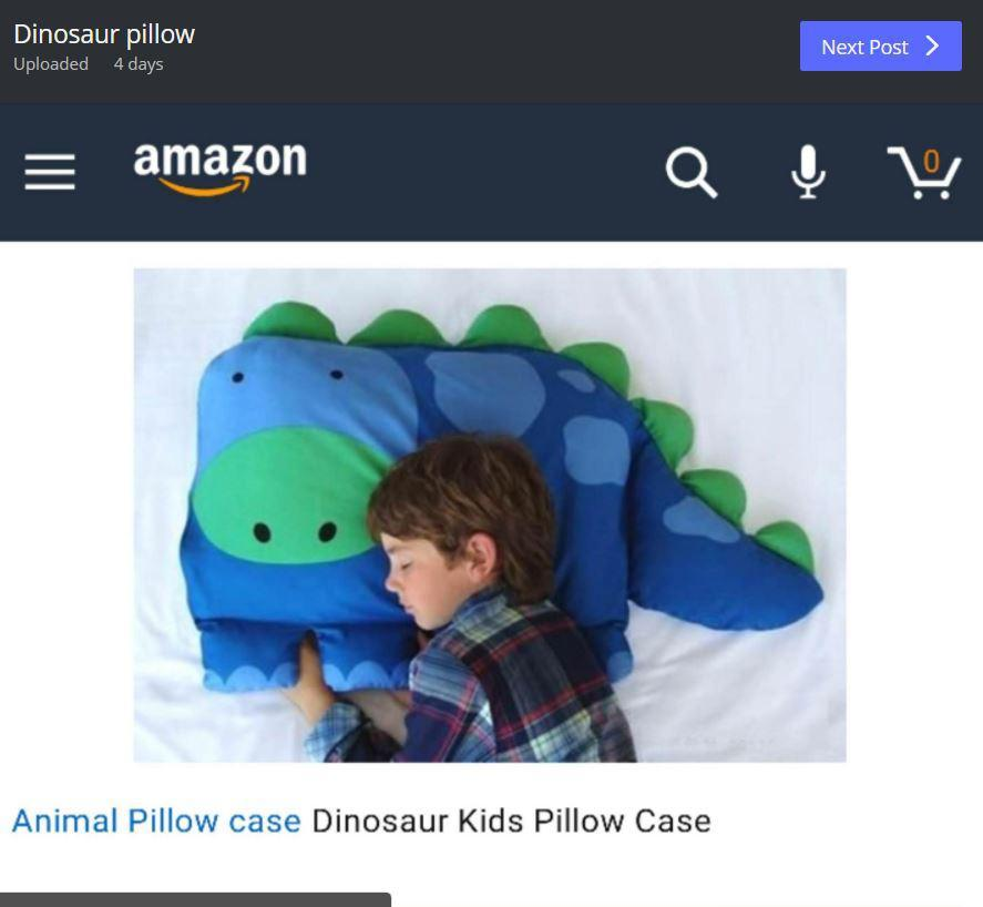 Amazon customer buys her a son a dinosaur pillow but what arrives leaves her shocked