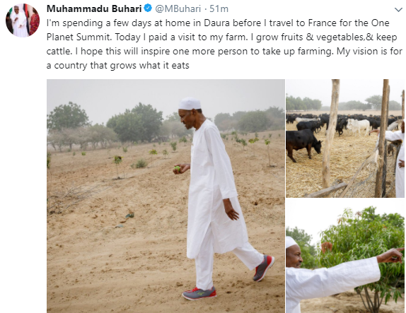 President Buhari rocks sneakers on traditional outfit as he inspect his farm in Katsina state
