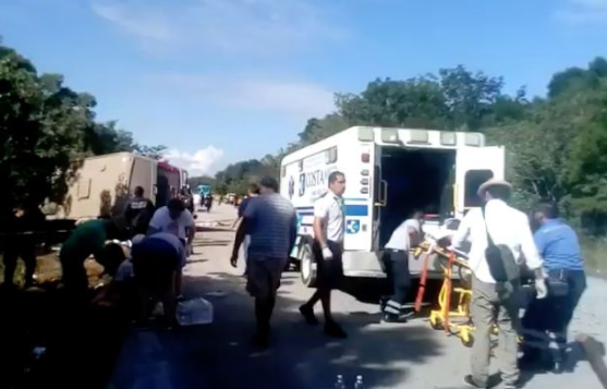 Bus crashes killing 11 tourists and their guide in Mexico