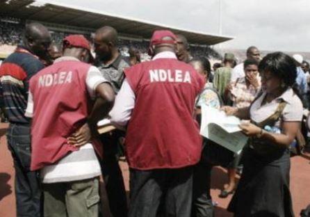?National Drug Law Enforcement Agent shot dead?In Kano State