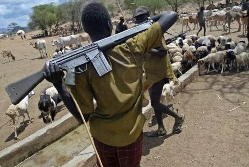Suspected Fulani herdsmen kill 2 Policemen In Benue state