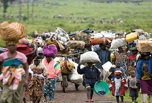 10,000 Cameroonian refugees In Nigeria - UN