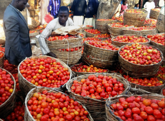 Minister of State, Industry, Trade and Investment Inaugurates tomato monitoring team