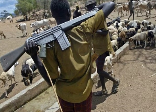 Herdsmen have killed over 1,500 farmers in 47 attacks ? Benue State government