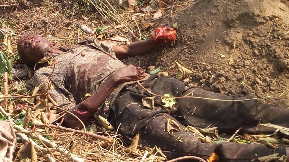 Suspected Fulani Herdsmen Kill elderly farmer In Oyo State (Photos)