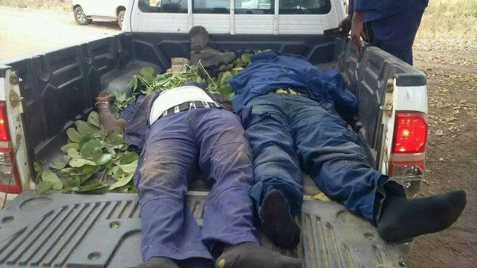 Suspected herdsmen kill two NSCDC officials in Benue