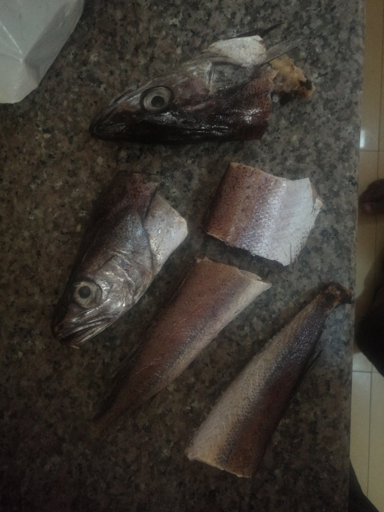 My goodness! They now sell fake frozen fish? (photos)