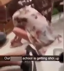 Harrowing video showing students screaming inside Florida school as shots were fired killing some of them