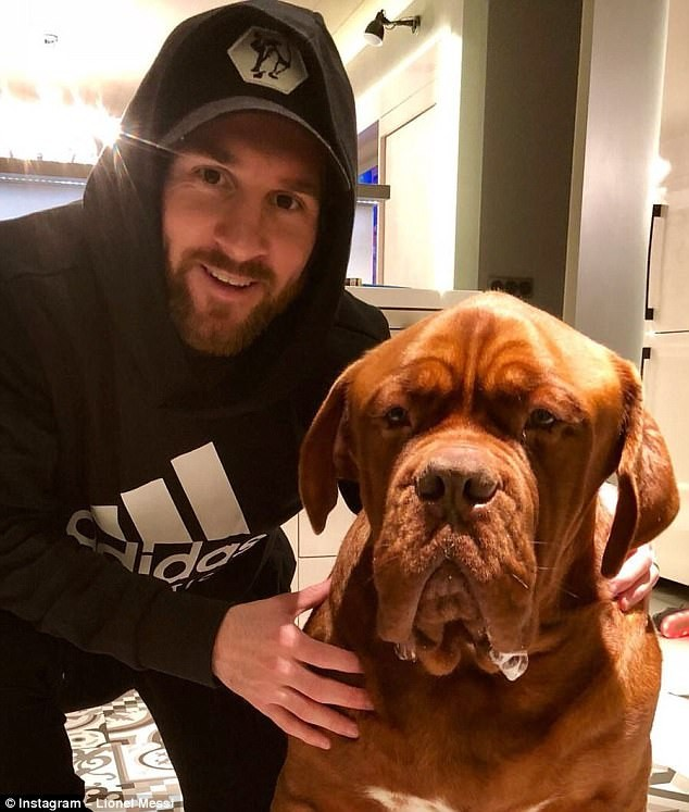 Barcelona star Lionel Messi relaxes with his human-sized dog at home (Photos)