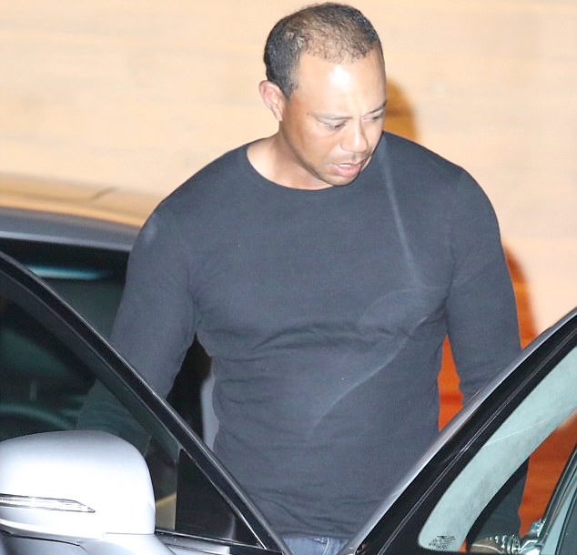The muscles on Tiger Woods these days...(photos)
