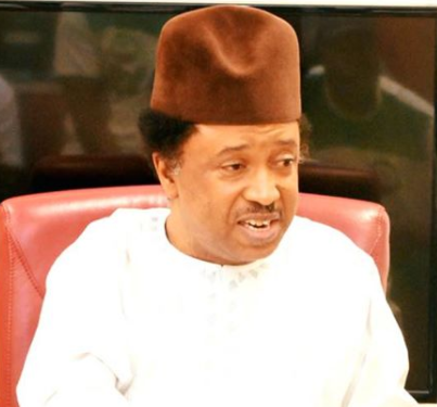 Killings: ''Most Northern elites cannot speak out because they are afraid of being tagged anti-president Buhari'' Shehu Sani