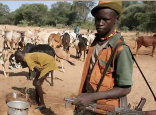 Nigerian Army?arrests herdsman with bullet-proof vest in Benue State