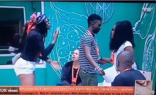 BBN housemates Alex and Cee-C nearly come to blows during a heated clash (Video)