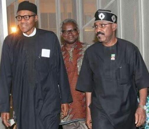 Senator Olurunnimbe Mamora rejects President Buhari
