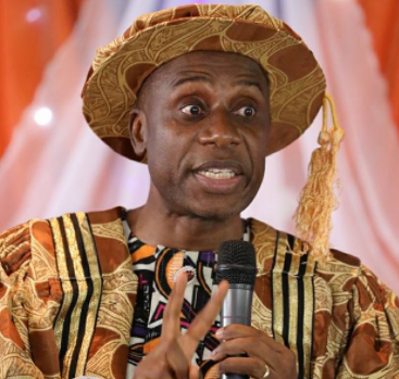 Rotimi Amaechi appeals to Igbos to vote President Buhari in 2019