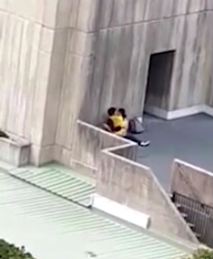 Students caught having sex against a wall on campus in broad daylight (video)