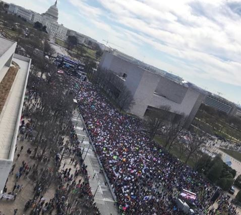 Photo: See the huge crowd that turned up in Washington for?the student-led march for gun reforms