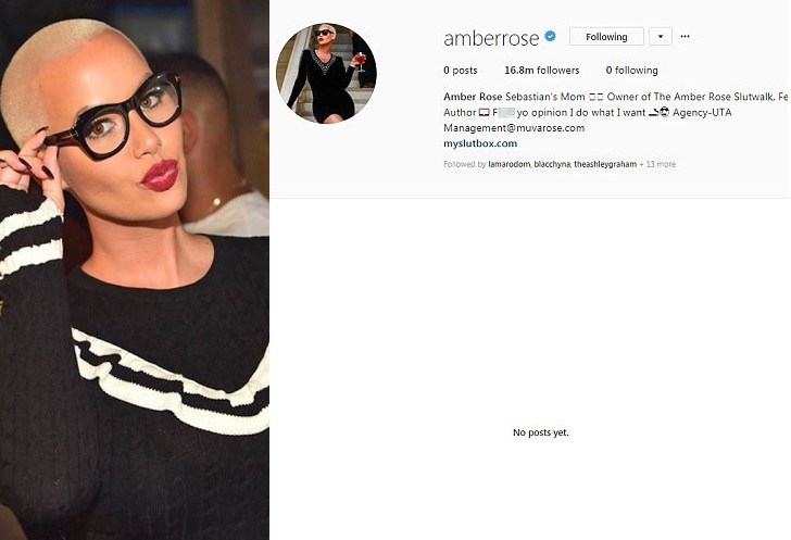 Amber Rose deletes all photos and unfollows everyone on Instagram two days after her son was called