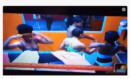 Female housemates filmed during shower time in Big Brother house (Video)