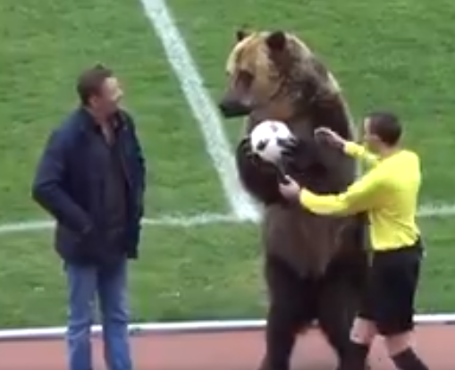 New York based Animal rights groups condemn the use of a bear that performed before a Russian soccer match