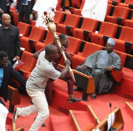 Photo of a senator looking unbothered amid the furore in the Senate Chambers goes viral