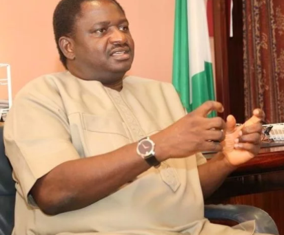 No single town in Nigeria?is under the control of Boko Haram - Femi?Adesina