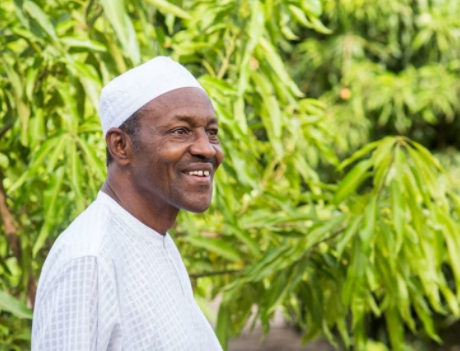 Nigerian youths need to maximise opportunities in Agriculture - President Buhari