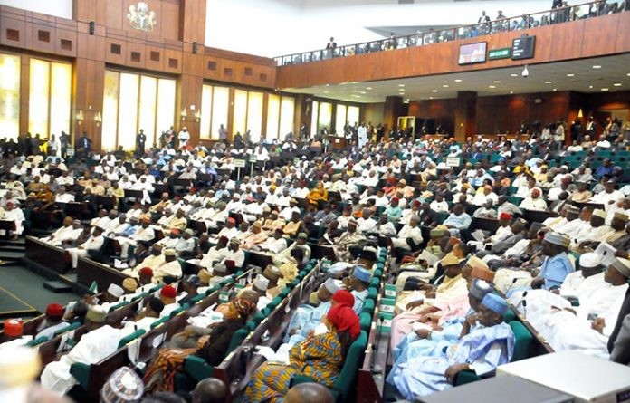 House of Reps in rowdy session over legality of June 12th as Democracy day