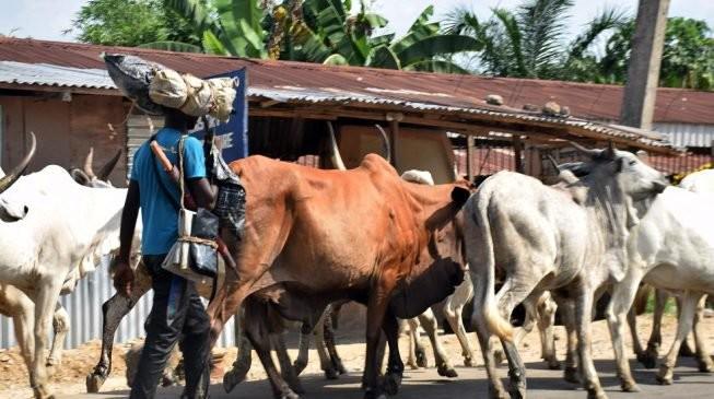 Miyetti Allah threatens Legal action against journalists over herdsmen killings