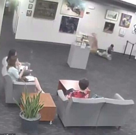 Parents are hit with $132,000 bill after their son, 5, knocks over a glass sculpture while hugging it