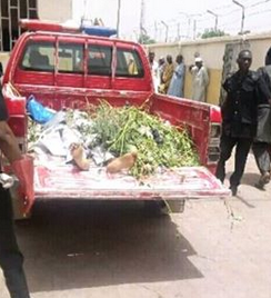Photos: Man, his wife and two sons perish in fatal accident in Kano