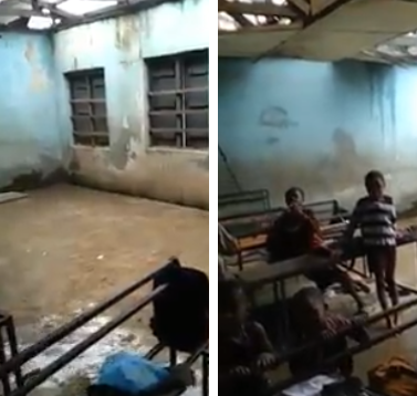 See the shocking state of a primary school in Edo state(video)