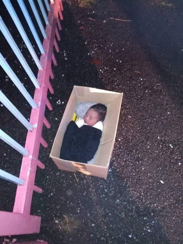 """""""Mother, father present yourselves to the police"""" - Facebook user angry after she found a newborn baby abandoned in a carton"""