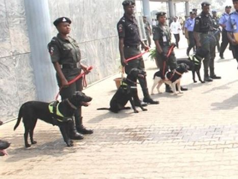 Police, civil defence demand N317m to feed dogs, horses ahead of 2019 elections