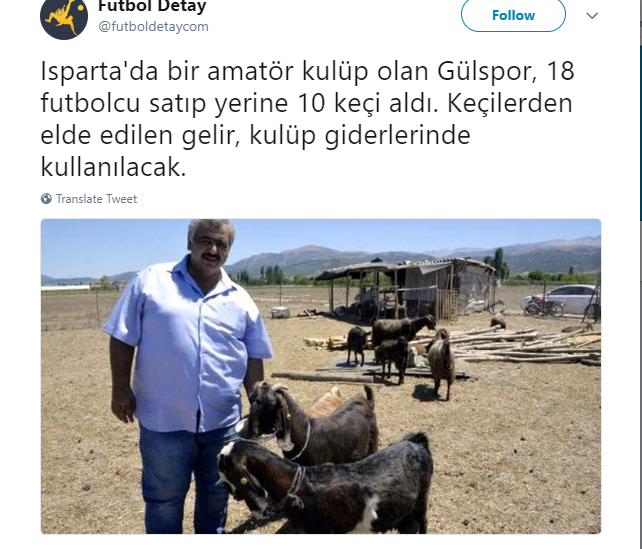 Turkish football team sells 18 players to buy 10 goats ?(Photo)