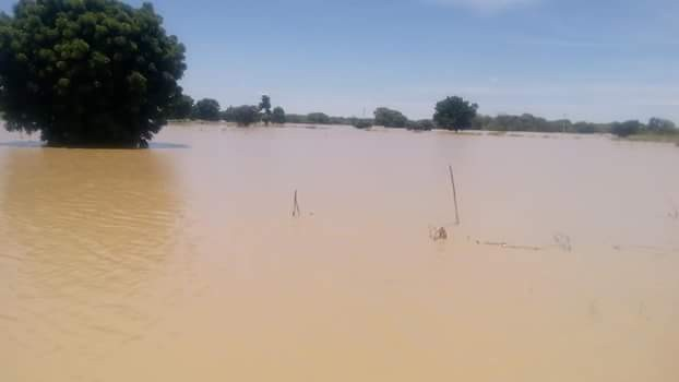 Photos: Flood ravages villages in Sokoto State