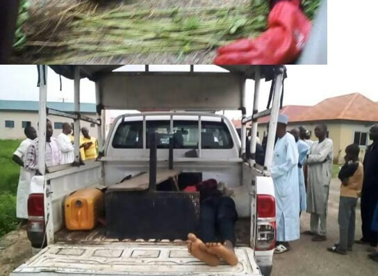 Photos: Suspected thief electrocuted while trying to steal transformer parts in Katsina