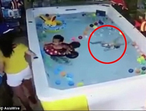 Horrifying moment 1-year-old girl drowns on her birthday while her mother was nearby texting on her phone (video)