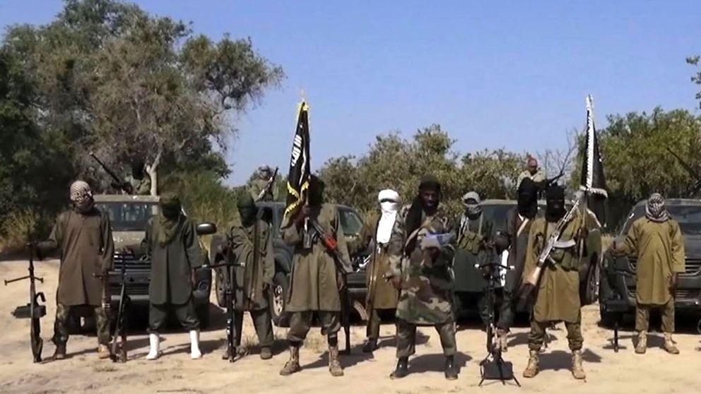 Suspected Boko Haram members kidnap 20 bus passengers in Borno