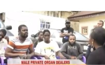 Kogi State Police command arrest 10-man gang that specializes in selling penises